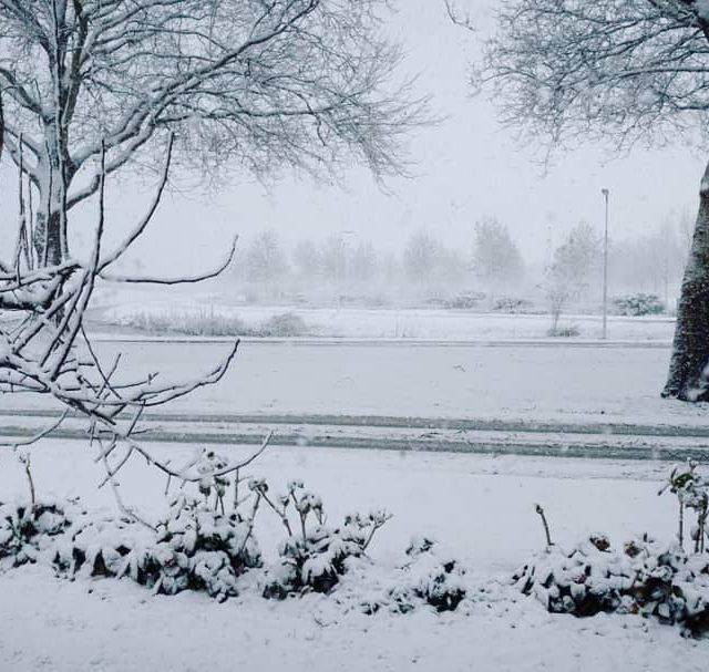 Love it!    snow sneeuw winter mooi beautifulhellip